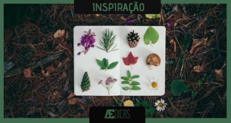 herbarium_001